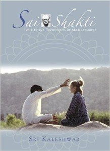 SSH healing book cover