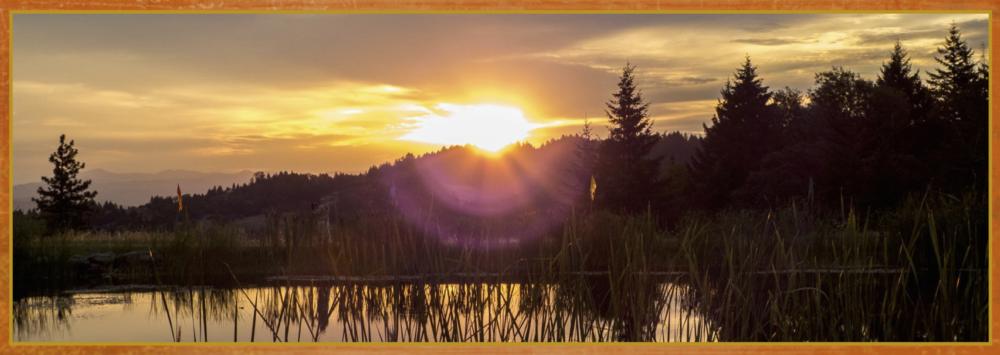 Sai Shakti Healing & Meditation